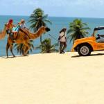 galeria-rifoles-praia-hotel-natal-destino-dunas-genipabu-2